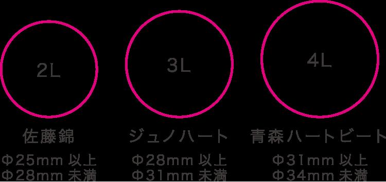 青森県産ジュノハート 国産品種とサイズ比較