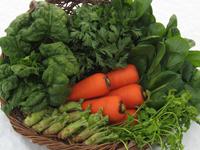 冬野菜と寒じめほうれん草