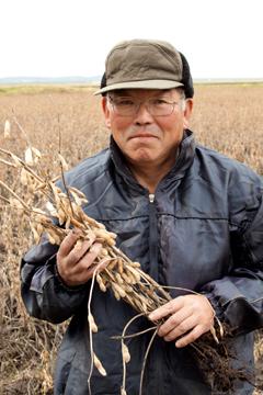 有機農法による大豆栽培