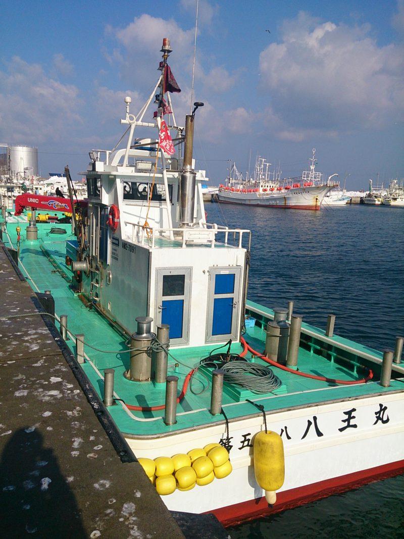 サクラマス漁 漁船