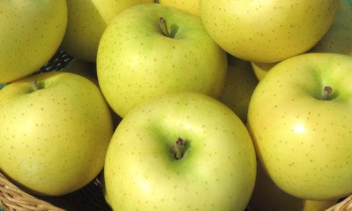 幸福の黄色いりんご