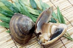 あおもりご当地食めぐり 十和田・三沢食のエリア 三沢ほっき丼 三沢産ほっき貝