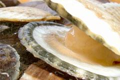 あおもりご当地食めぐり 青い森食のエリア ホタテ貝焼き味噌