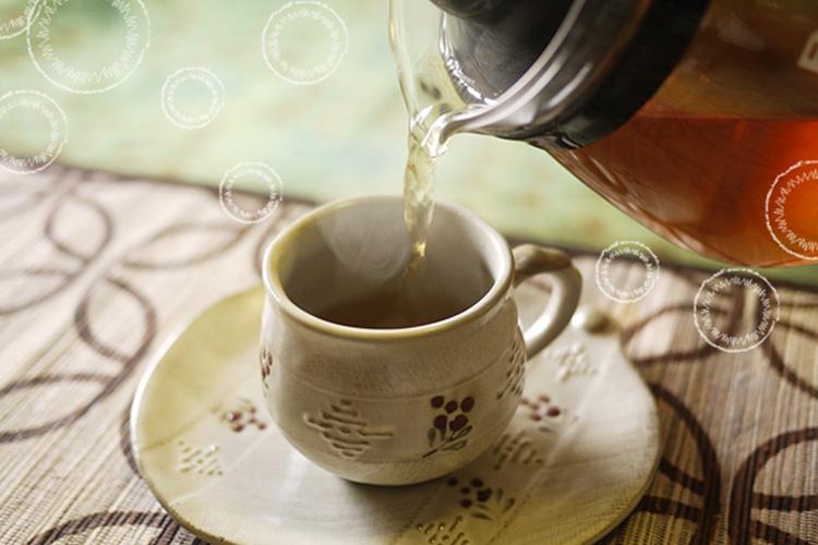 青森ごぼう茶