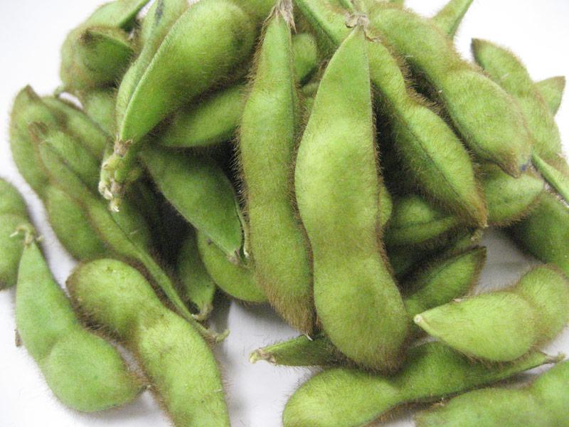 青森県の在来枝豆 毛豆