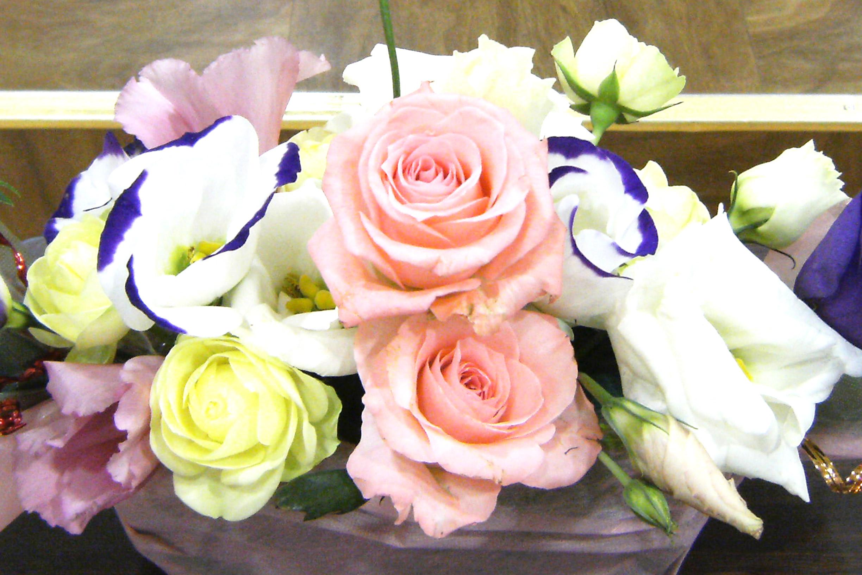 2011年6月号 暮らしを彩るあおもりの花たち