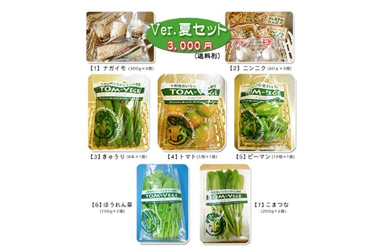 おいしいミネラル野菜「トムベジ」のギフトセット