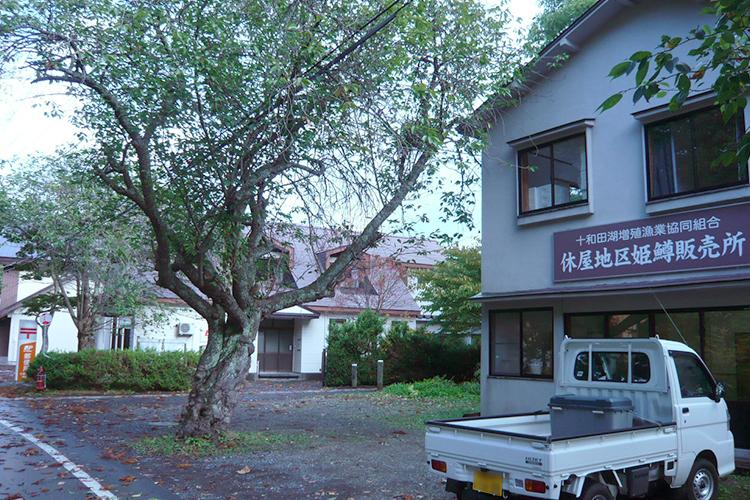 十和田湖増殖漁業協同組合