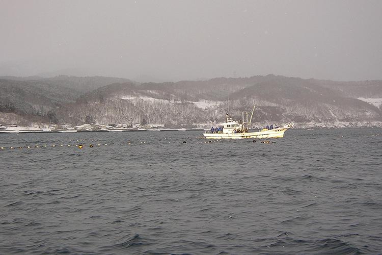 冬の出漁風景