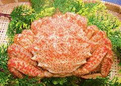 トゲクリガニも茹でて食べるのが一般的