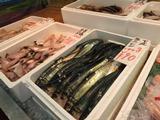 道の駅浅虫温泉「ゆ~さ市場」活きの良い魚がそろっています