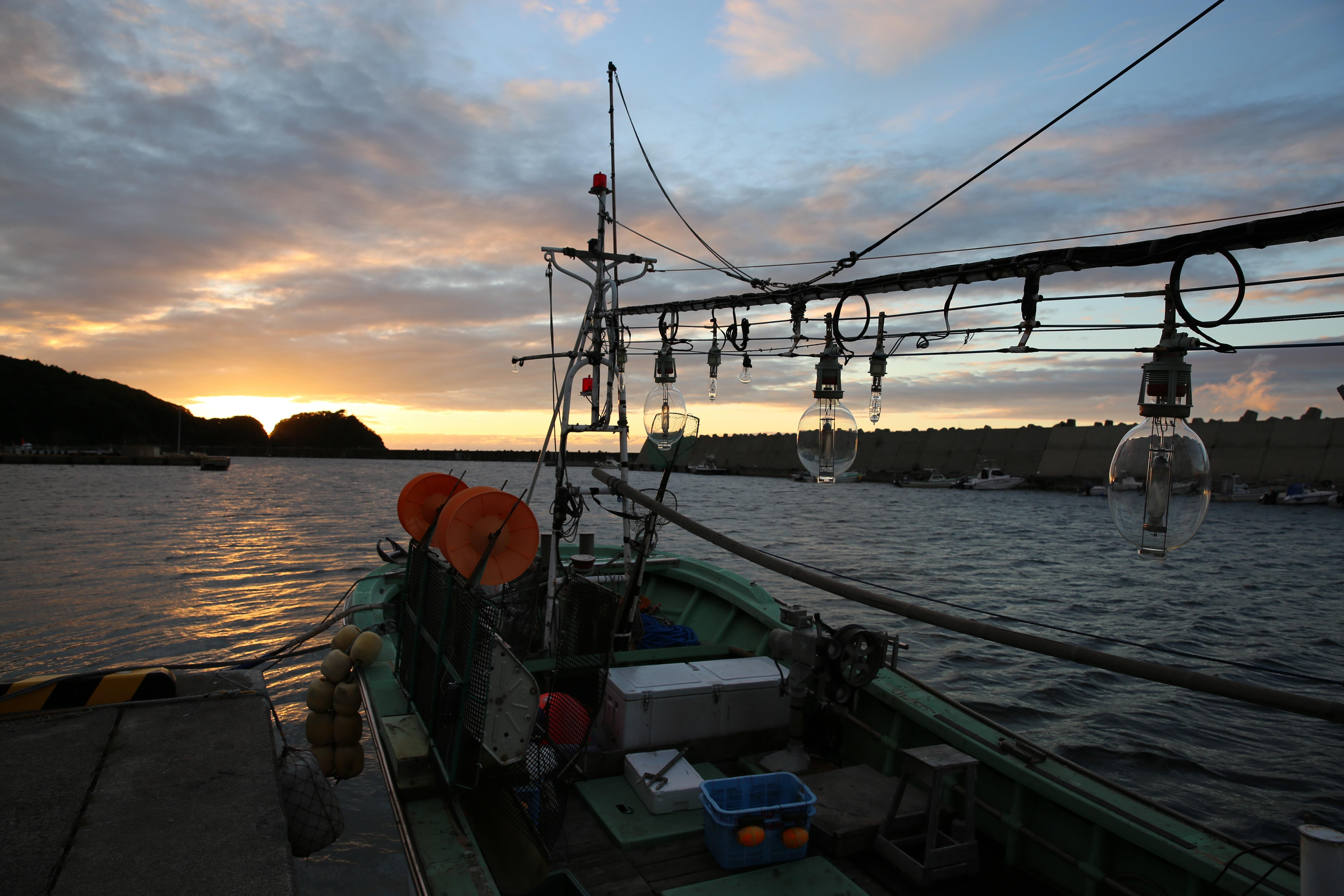 ウスメバルの漁