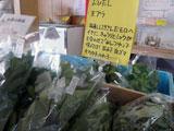 まさかりプラザ野菜とりたて市 オススメの食べ方を紹介