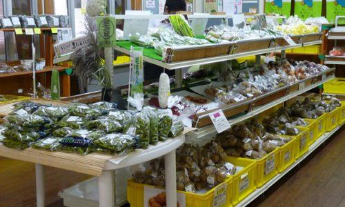 道の駅よこはま「菜の花プラザ」