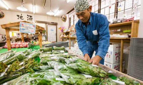 JA相馬村特産物直売センター「林檎の森」新鮮な地元の野菜