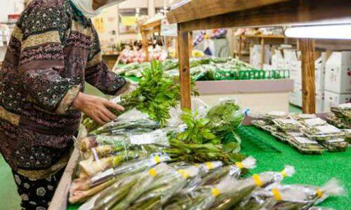 JA相馬村特産物直売センター「林檎の森」春には山菜も