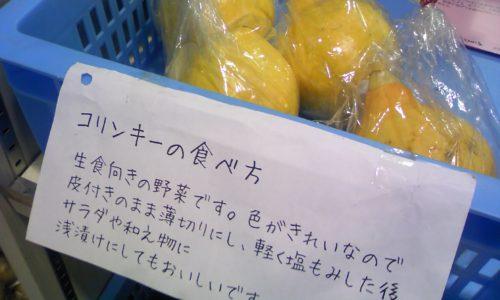 道の駅とわだ「とわだぴあ」 生食向きの野菜「コリンキー」