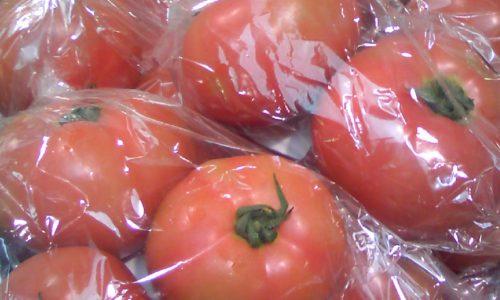 道の駅とわだ「とわだぴあ」 新鮮なトマトたち