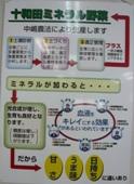 十和田やさい館 ミネラル野菜