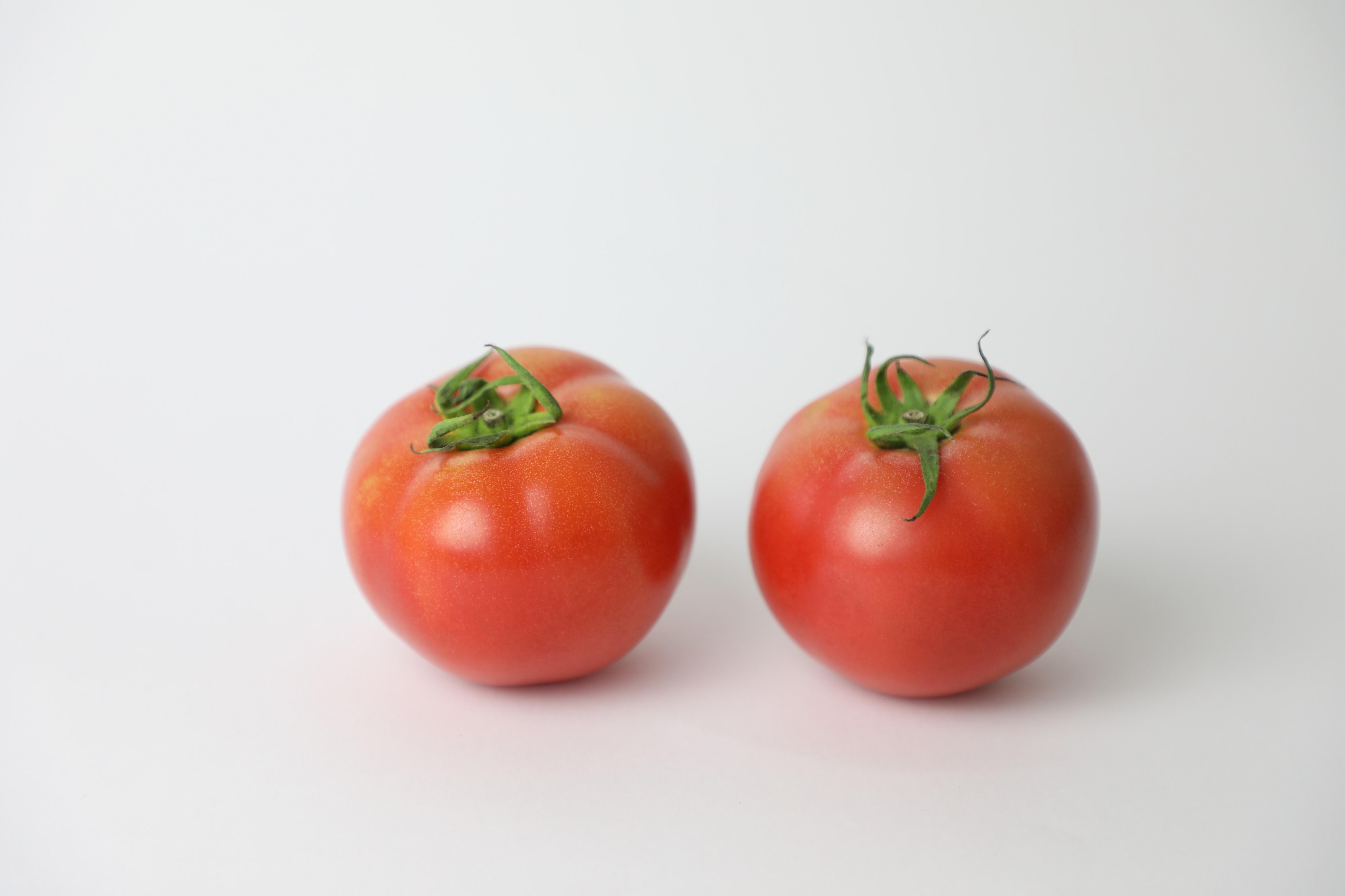 夏秋トマト