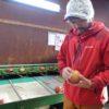 「RED APPLE 赤石農園」赤石 淳市さん