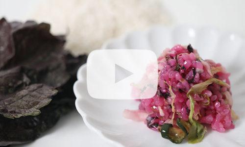 【郷土料理】お米のお漬物「すしこ」