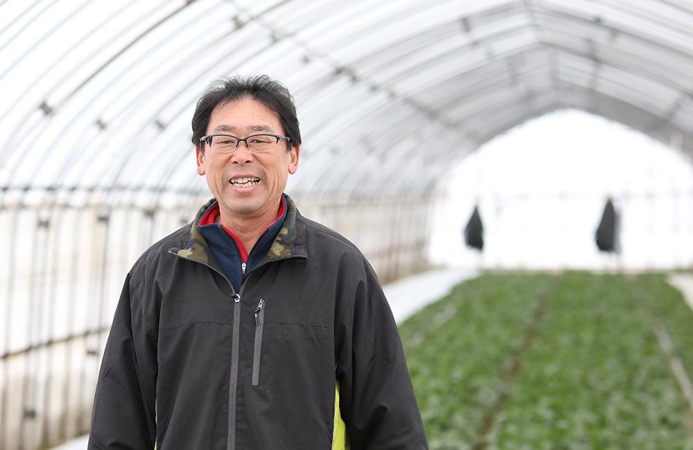 弘前市清野袋地区でほうれんそうを栽培している石田嘉人さん