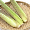 低カロリーで食物繊維たっぷりの健康野菜!マコモタケ。